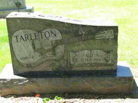 TARLETON, JAMES R. - Union County, Ohio | JAMES R. TARLETON - Ohio Gravestone Photos