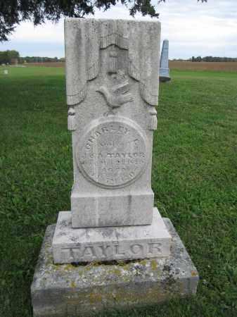 TAYLOR, CHARLEY E. - Union County, Ohio | CHARLEY E. TAYLOR - Ohio Gravestone Photos