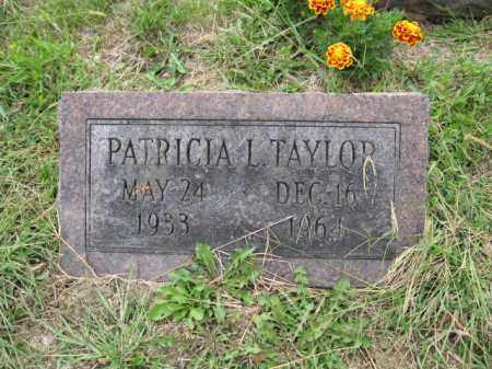 TAYLOR, PATRICIA L. - Union County, Ohio | PATRICIA L. TAYLOR - Ohio Gravestone Photos