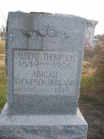 BORLAND, ABIGAIL THOMPSON - Union County, Ohio | ABIGAIL THOMPSON BORLAND - Ohio Gravestone Photos