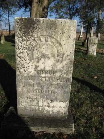 THOMPSON, HESTER ANN - Union County, Ohio | HESTER ANN THOMPSON - Ohio Gravestone Photos