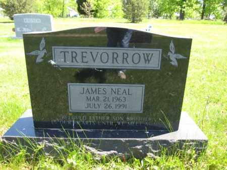 TREVORROW, JAMES NEAL - Union County, Ohio | JAMES NEAL TREVORROW - Ohio Gravestone Photos