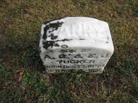 TUCKER, HARRY - Union County, Ohio | HARRY TUCKER - Ohio Gravestone Photos