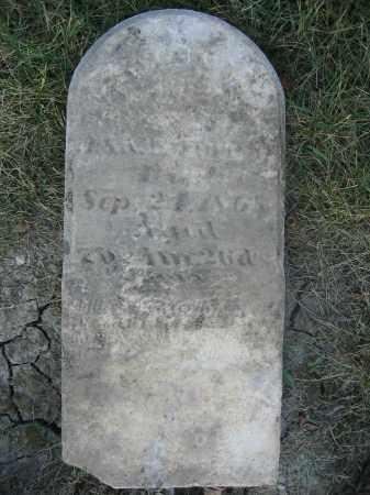TURNER, EDWIN - Union County, Ohio | EDWIN TURNER - Ohio Gravestone Photos