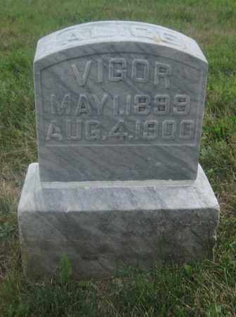 VIGOR, ALICE - Union County, Ohio | ALICE VIGOR - Ohio Gravestone Photos