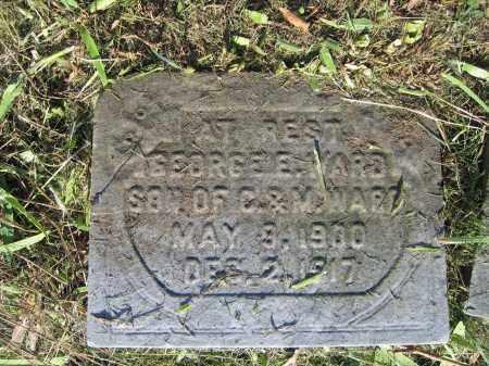 WARD, GEORGE - Union County, Ohio   GEORGE WARD - Ohio Gravestone Photos