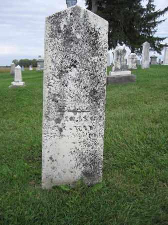 WASSON, THORNTON - Union County, Ohio   THORNTON WASSON - Ohio Gravestone Photos
