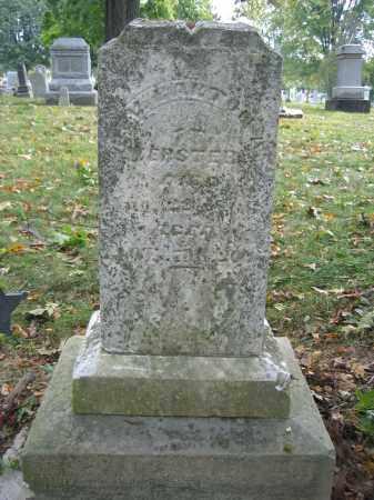 WEBSTER, REV. BARTON A. - Union County, Ohio | REV. BARTON A. WEBSTER - Ohio Gravestone Photos