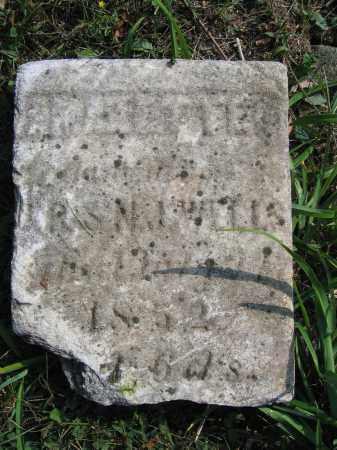 WELLS, AZETTE - Union County, Ohio | AZETTE WELLS - Ohio Gravestone Photos