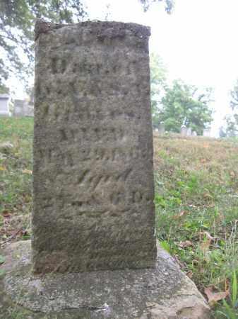WELLS, IDA - Union County, Ohio | IDA WELLS - Ohio Gravestone Photos