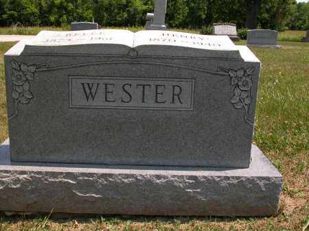 WESTER, HENRY - Union County, Ohio   HENRY WESTER - Ohio Gravestone Photos