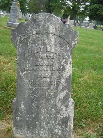 WHITE, NANCY BABBS - Union County, Ohio | NANCY BABBS WHITE - Ohio Gravestone Photos