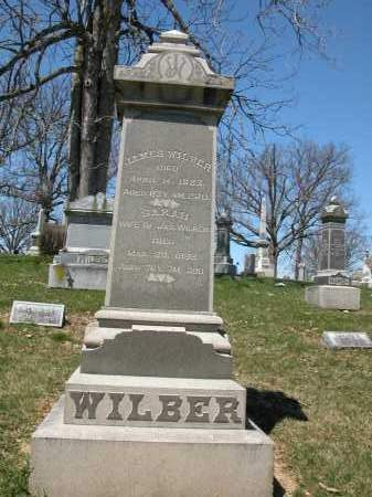 WILBER, ALMEDA - Union County, Ohio | ALMEDA WILBER - Ohio Gravestone Photos
