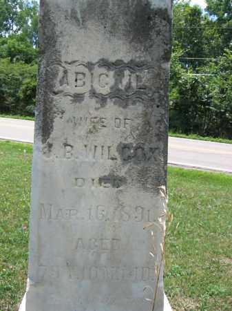 WILCOX, ABIGAIL - Union County, Ohio   ABIGAIL WILCOX - Ohio Gravestone Photos