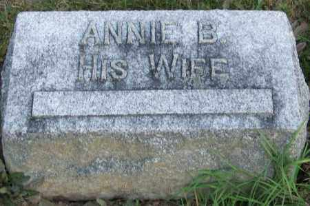 WILEY, ANNIE B - Union County, Ohio | ANNIE B WILEY - Ohio Gravestone Photos