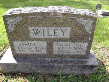 WILEY, SARAH OLIVE - Union County, Ohio | SARAH OLIVE WILEY - Ohio Gravestone Photos