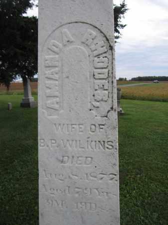 WILKINS, AMANDA RHODES - Union County, Ohio | AMANDA RHODES WILKINS - Ohio Gravestone Photos