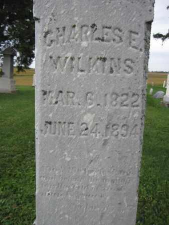 WILKINS, CHALRES E. - Union County, Ohio   CHALRES E. WILKINS - Ohio Gravestone Photos