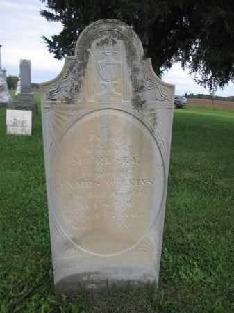 WILKINS, ELSEY - Union County, Ohio | ELSEY WILKINS - Ohio Gravestone Photos