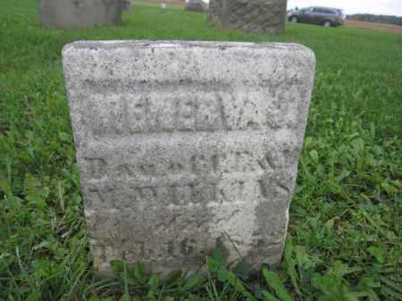 WILKINS, MENERVA J. - Union County, Ohio   MENERVA J. WILKINS - Ohio Gravestone Photos