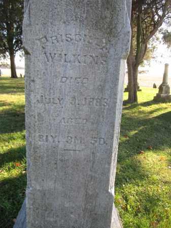 WILKINS, PRISCILLA - Union County, Ohio | PRISCILLA WILKINS - Ohio Gravestone Photos