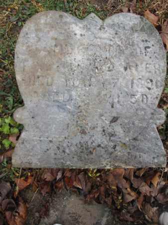 WILLAUER, SAMUEL - Union County, Ohio | SAMUEL WILLAUER - Ohio Gravestone Photos