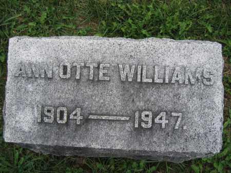 WILLIAMS, ANN OTTE - Union County, Ohio | ANN OTTE WILLIAMS - Ohio Gravestone Photos