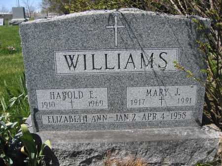 WILLIAMS, MARY J. - Union County, Ohio | MARY J. WILLIAMS - Ohio Gravestone Photos