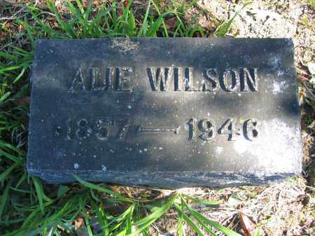 WILSON, ALICE - Union County, Ohio | ALICE WILSON - Ohio Gravestone Photos