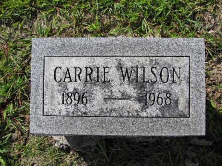 WILSON, CARRIE - Union County, Ohio   CARRIE WILSON - Ohio Gravestone Photos