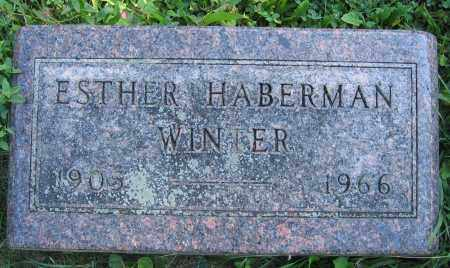 WINTER, ESTHER HABERMAN - Union County, Ohio | ESTHER HABERMAN WINTER - Ohio Gravestone Photos