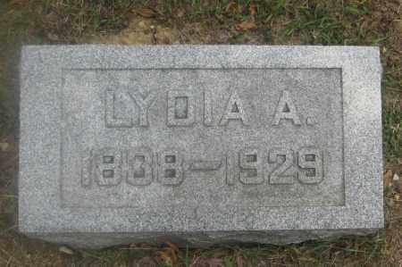 WISE, LYDIA A. - Union County, Ohio | LYDIA A. WISE - Ohio Gravestone Photos