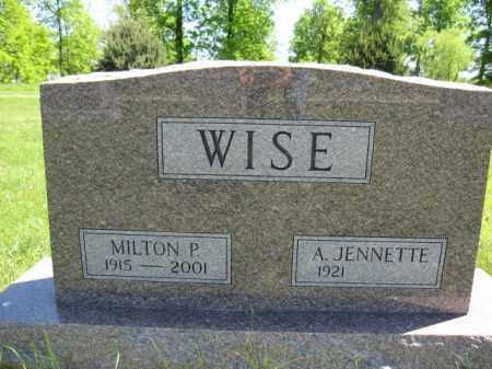 WISE, A. JENNETTE - Union County, Ohio | A. JENNETTE WISE - Ohio Gravestone Photos