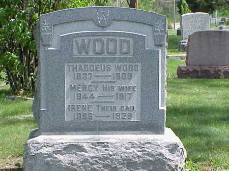 WOOD, THADDEUS - Union County, Ohio | THADDEUS WOOD - Ohio Gravestone Photos