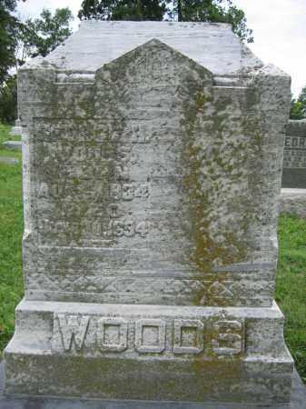 WOODS, GEORGE H. - Union County, Ohio   GEORGE H. WOODS - Ohio Gravestone Photos