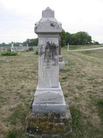 WOODS, MARY MORSE - Union County, Ohio | MARY MORSE WOODS - Ohio Gravestone Photos