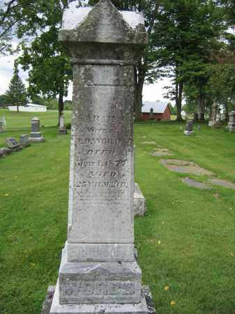 WORBS, SARAH - Union County, Ohio | SARAH WORBS - Ohio Gravestone Photos