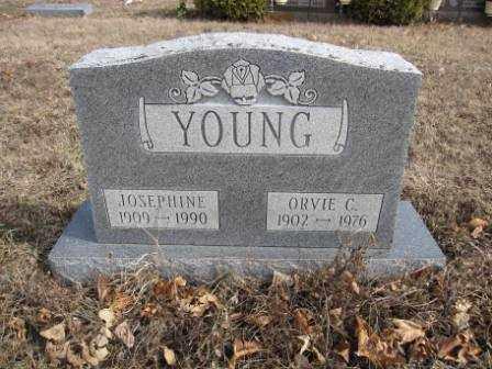 YOUNG, ORVIE C. - Union County, Ohio | ORVIE C. YOUNG - Ohio Gravestone Photos