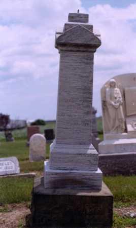 LEWIS, MORGAN - Van Wert County, Ohio | MORGAN LEWIS - Ohio Gravestone Photos