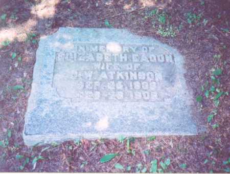 ATKINSON,, ELIZABETH - Vinton County, Ohio | ELIZABETH ATKINSON, - Ohio Gravestone Photos