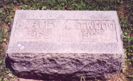 ATWOOD, HARVEY A. - Vinton County, Ohio | HARVEY A. ATWOOD - Ohio Gravestone Photos