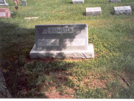 SHARP BANISTER, MARY - Vinton County, Ohio | MARY SHARP BANISTER - Ohio Gravestone Photos
