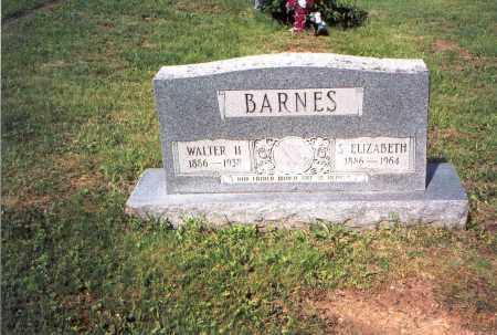 BARNES, S. ELIZABETH - Vinton County, Ohio   S. ELIZABETH BARNES - Ohio Gravestone Photos