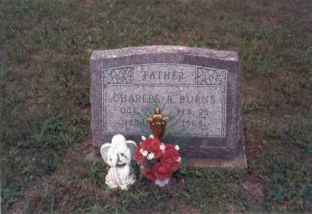 BURNS, CHARLES R. - Vinton County, Ohio | CHARLES R. BURNS - Ohio Gravestone Photos