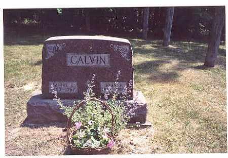 CALVIN, JOHN - Vinton County, Ohio | JOHN CALVIN - Ohio Gravestone Photos