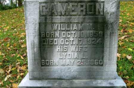 CAMERON, WILLIAM M. - Vinton County, Ohio   WILLIAM M. CAMERON - Ohio Gravestone Photos
