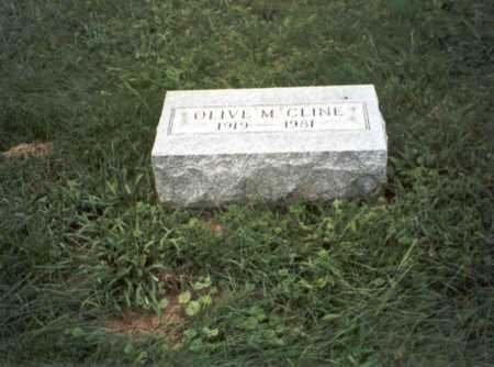 CLINE, OLIVE M. - Vinton County, Ohio | OLIVE M. CLINE - Ohio Gravestone Photos