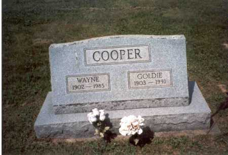COOPER, GOLDIE - Vinton County, Ohio | GOLDIE COOPER - Ohio Gravestone Photos