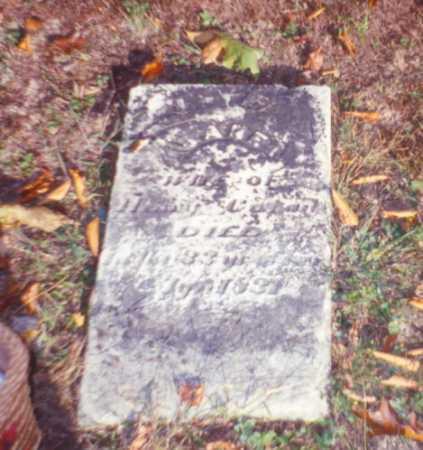 COZAD, JANE - Vinton County, Ohio | JANE COZAD - Ohio Gravestone Photos
