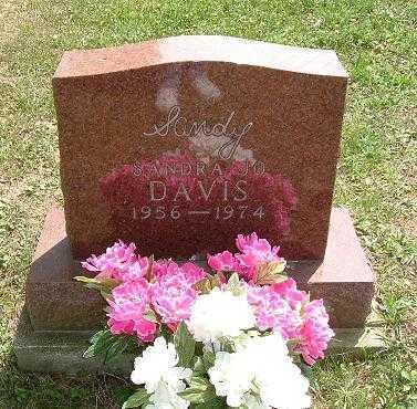 DAVIS, SANDRA JO - Vinton County, Ohio   SANDRA JO DAVIS - Ohio Gravestone Photos